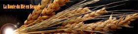 La route du blé